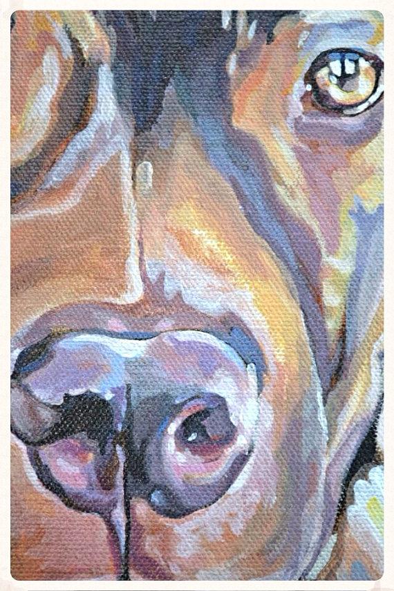 11x14 Dog Portrait